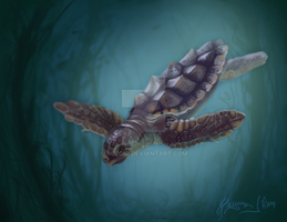 Sea Turtle by aceoni