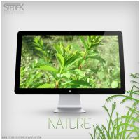 Nature Wallpaper by SterekCreations