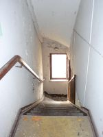 downstairs by mimose-stock
