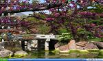 Japaneses Garden by vamp4life