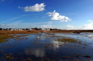 Mudeford Nature Reserve 16 by paganchild1974