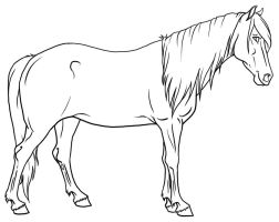 Mare Lineart by urilium