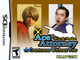 Ace Attorney DS 2012 by WizWar100