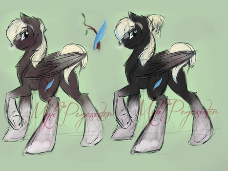 Elias's Old designs by MyLilPegasister