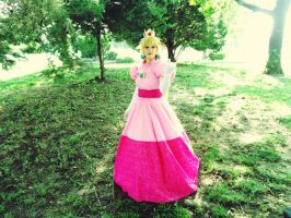 Princess Toadstool 'Motaku 2014' by MissLink8908