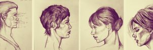 Profile Studies by amirafox