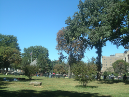Rufus King Park by Creativepup702
