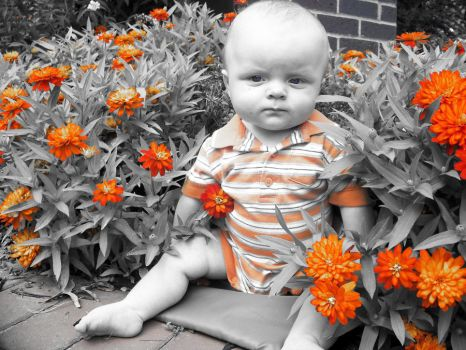 Baby in Orange by sammiexrenee89