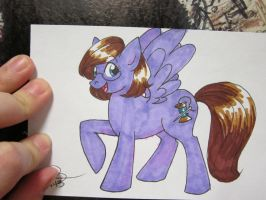 SPACE 2013 Pony Commission by alex-heberling