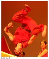 Chinese Acrobatic Flip by Della-Stock