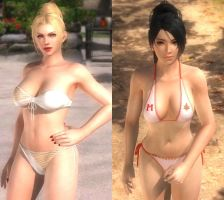 Rachel And Momiji the Ninja Gaiden beauties by desmondlogan