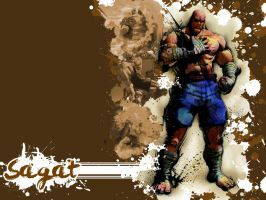 SFIV Alternate Sagat by Vegett0