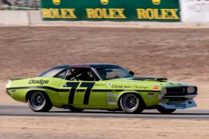 Sam Posey's 1970 Dodge Challenger by SharkHarrington