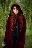 Grimm's Gothic Fantasy - Little Red Riding Hood by faramon