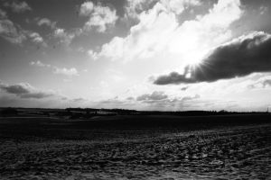 Winter Sky, black and white by johnsmed91