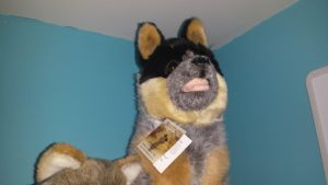 Brochetta australian cattle dog by Akitas237collections