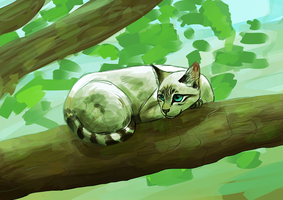 Cat on Tree by Soulphur