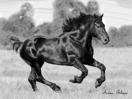 Percheron finished by AndreaSchepisi