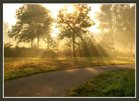Sunbeams by Buble