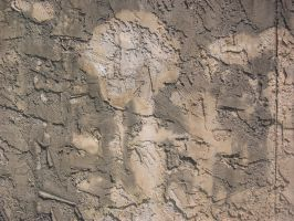 Texture - Mottled Stucco 1 by darlingstock