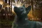 I AM A WOLF - BUT I WILL FLY by EpicSouleh