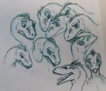 Raptor Expression Practice by albinoraven666fanart