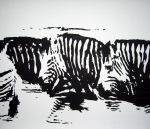 Monochrome Zebras by nimraw