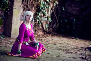 SS Zelda - Sealed Temple by hoshi-kagami