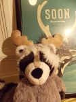 Soon Raccoon Plushie Selfie by eembuc1000