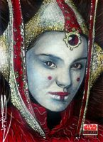 Star Wars Galaxy 5 Padme by RandySiplon