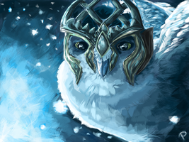 The Owls of Ga'Hoole by Rommeu