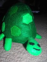 turtle turtle by 4EverUnknown