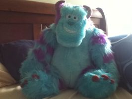 My Sulley! by CooperGal24
