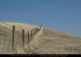 Fenceline 2 by SalsolaStock