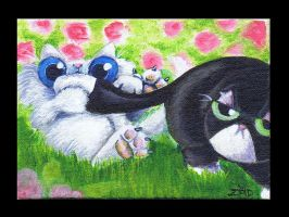 Funny cat is a nuisance ACEO by KingZoidLord