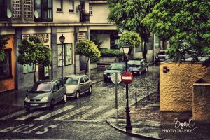 raining day 2 by olteanu