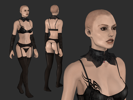 New meshmod wip1 by tombraider4ever