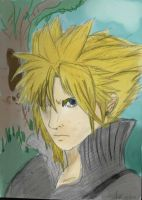 Cloud in colour.. FINALY by Anizu