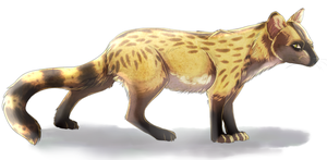 A genet by CordisaWire