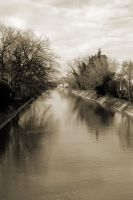 Channel and trees by frank74it