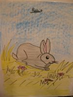Rabbit drawing :D by MewMewMinto1123