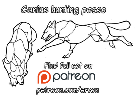 Pose Reference: Hunting Canines + DLC by ARVEN92