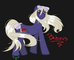 Belarus Pony by HippieUnicornFlower