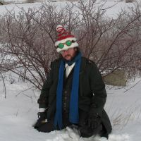 Sessian Santa Hat with Green Goggles 1a by Windthin