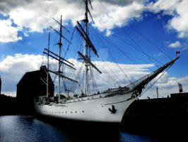 Gorch Fock by Equave