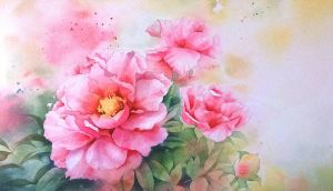 peony in May by nemling