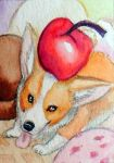 Corgi Cream ACEO by Stormslegacy