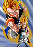 Gogeta and Gotenks by Niiii-Link
