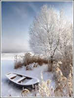 Winter dream by satorifoto