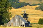 Summer in Sonoma Co. by smfoley